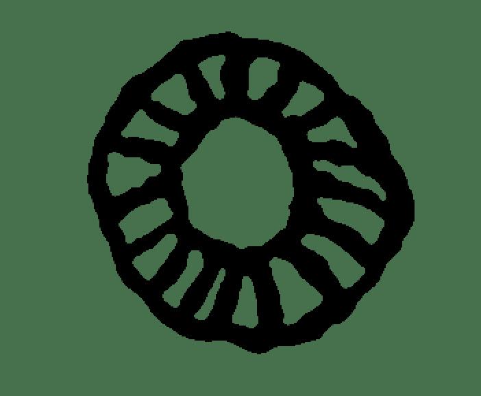 SABATA-MPHO MOKAE 24